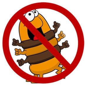 Förbjuden Bugburger