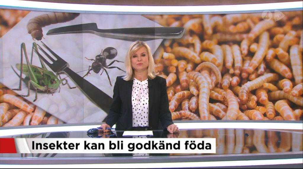 insekter_i_sverige