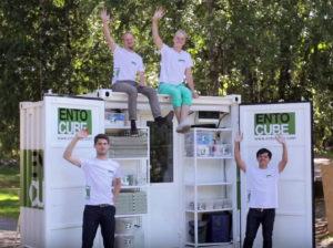 Några av EntoCube-grundarna framför sin skapelse (Foto: Skärmdump från EntoCubes Youtubefilm)