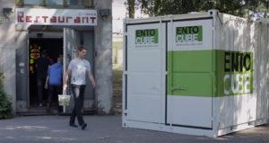 EntoCube visar i sin film hur de matar syrsorna med matavfall från restaurang (Bild: Skärmdump från Youtubefilm)