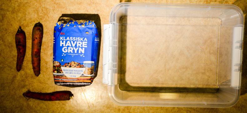 Morötter, havregryn, plastlåda + äggkartong och mjölmaskar är allt som behövs.