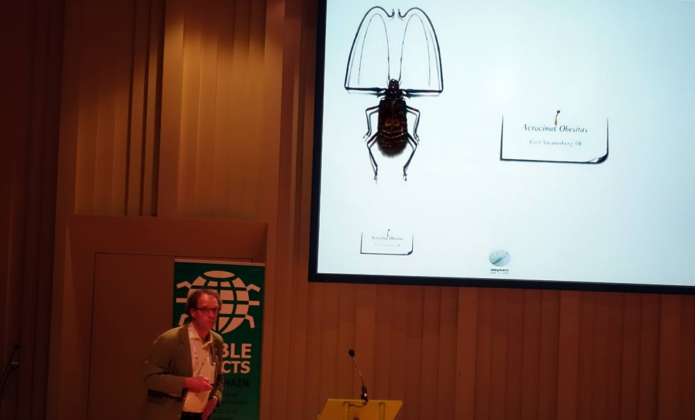 Marcel Dicke presenting insects in art (photo: Bugburger)