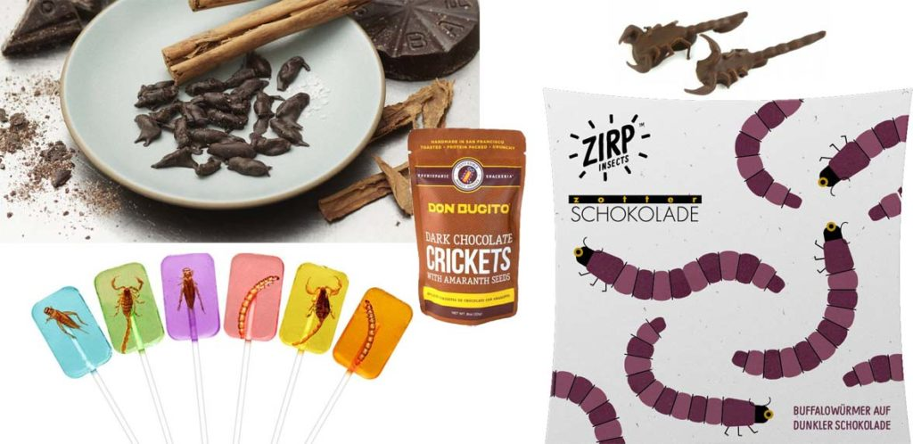 Candy and chocolate covered insects