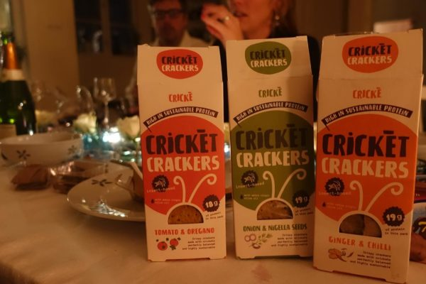 Cricke crakers new year